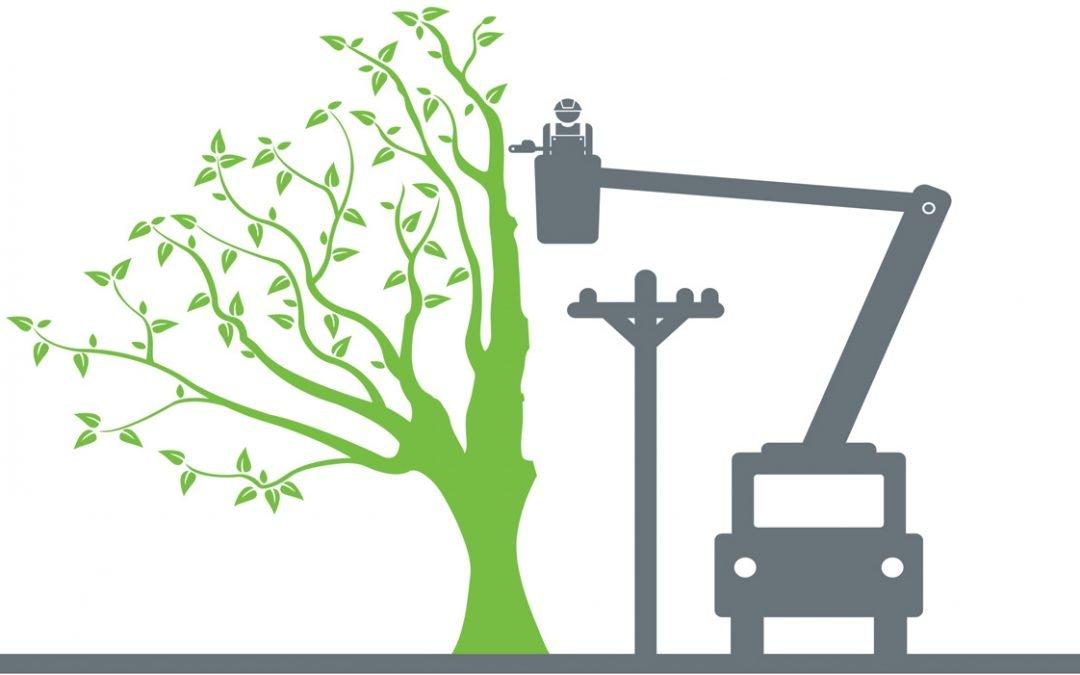 Avoiding Tree Utility Conflict